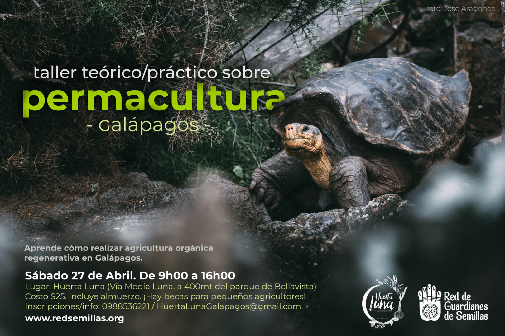 permacultura galapagos organic food semillas