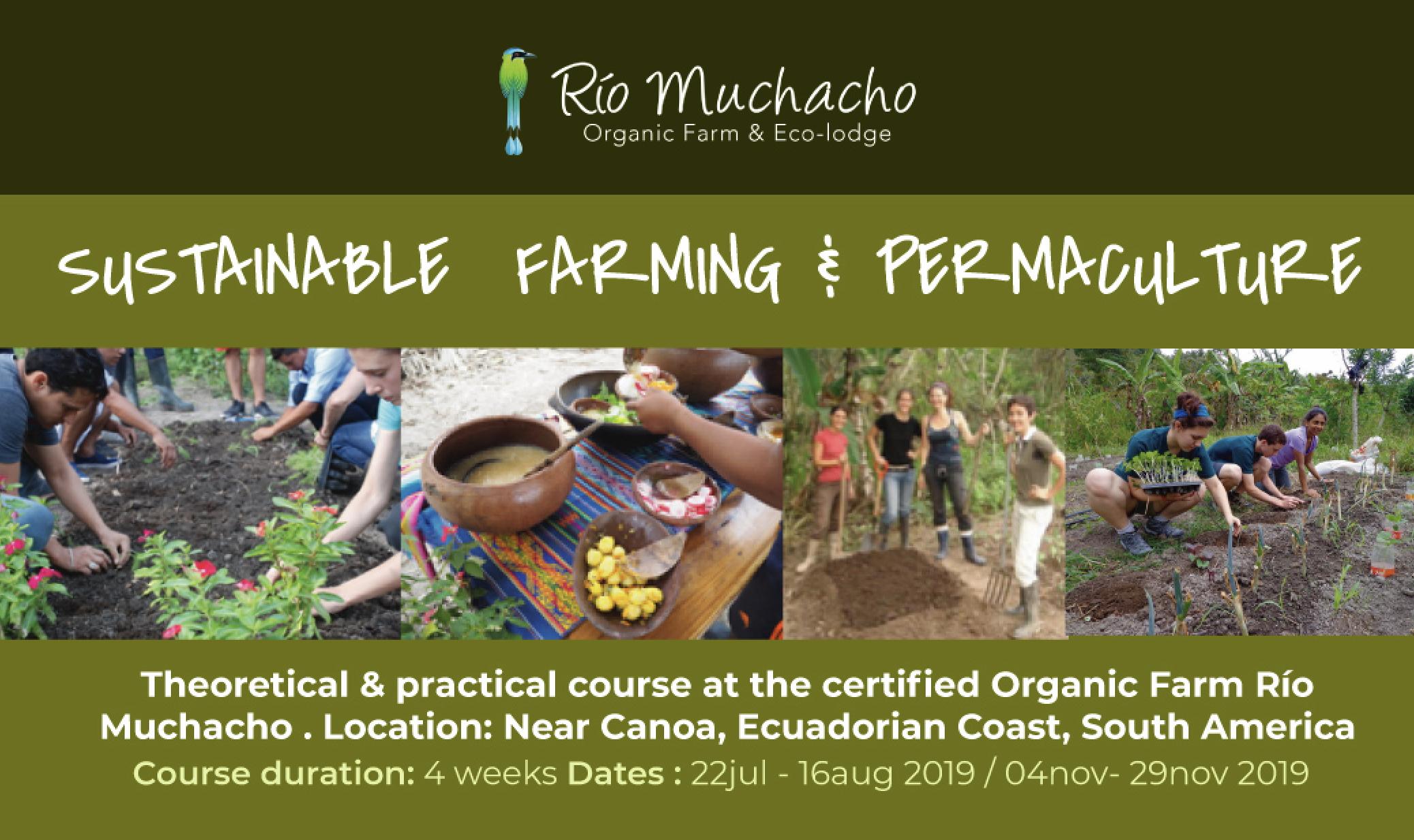 pdc permaculture course ecuador